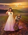 Tigers and Lanterns atSunset